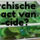 Psychische impact van eco-cide?